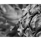 Pineapple by drewkrispies