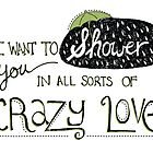 I Want To Shower You In All Sorts Of Crazy Love by joyfulroots