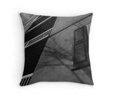 Scale the wall Throw Pillow