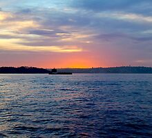 Sydney Harbour Sunrise by Janie. D