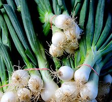 Spring Onions by Janie. D