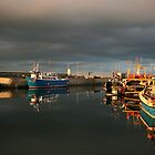 Evening Light in Seahouses Harbour by CharlotteMorse