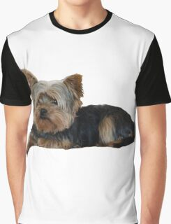 Cute Yorkshire terrier Graphic T-Shirt