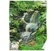 Heber's Ghyll Ilkley Poster