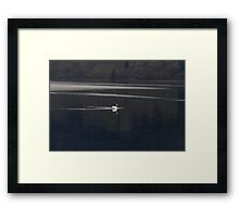 A white goose swimming in the morning in Loch Ness Framed Print