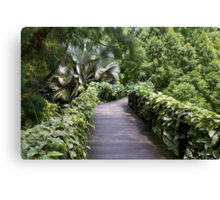 A raised walking path inside the National Orchid Garden in Singapore Canvas Print
