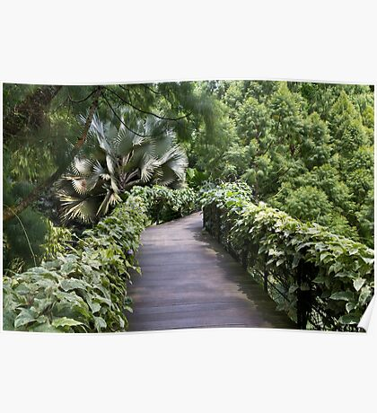 A raised walking path inside the National Orchid Garden in Singapore Poster