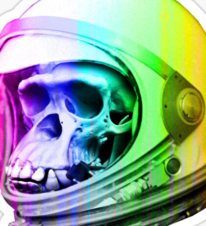 Space Primate Astro Skull Sticker