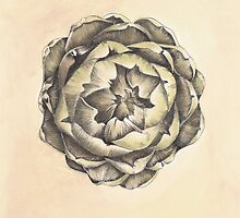 Artichoke III Print by cathy savels