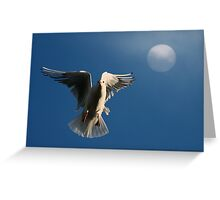 Time to Roost Greeting Card