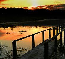 Belizian lake at sunset by Linda Sparks