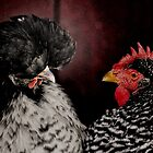 *Gossiping Hens* by DeeZ (D L Honeycutt)