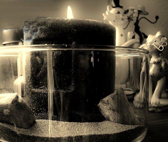 Zen by Brenda Dahl