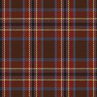 01109 Windy Meadows Fashion Tartan Fabric Print Iphone Case by Detnecs2013
