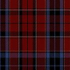 01112 Alyssa's Theme Fashion Tartan Fabric Print Iphone Case by Detnecs2013