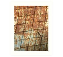 Lizard on Rusted Metal 1 Art Print