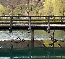 Mill Bridge at Postojna by jojobob