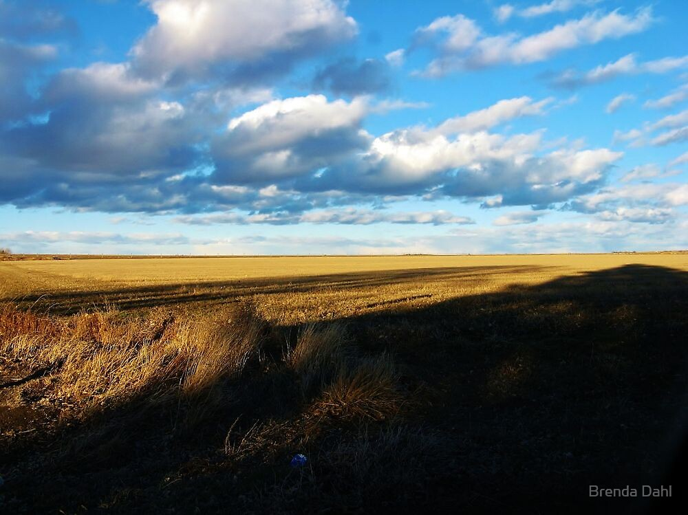 Light and Dark Countryside View by Brenda Dahl