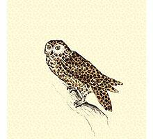 The Jaguar Owl Photographic Print