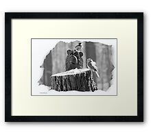 SMOKEY AND FRIENDS Framed Print