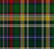 01116 Valencia Commemorative Tartan Fabric Print Iphone Case by Detnecs2013