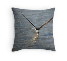 Skimmer at Sea Throw Pillow