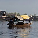 Kashmiri man rowing a shikara in the waters of the Dal Lake in Srinagar by ashishagarwal74
