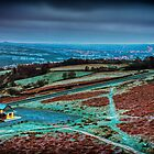 Cow & Calf Cafe | Ilkley by scottsmithphoto