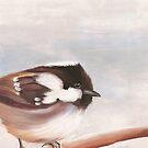 Coal Tit Bird Print  by cathy savels