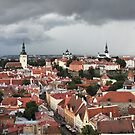 medieval town Tallinn, by mrivserg