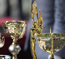 sports awards by mrivserg