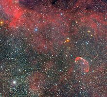 NGC 6888 - Crescent Nebula by Sylvain Girard