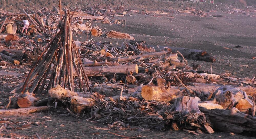 Driftwood beach art. by Carolynn Cumor