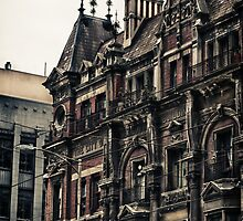 The City Of Melbourne Building by Colin  Ewington
