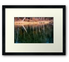 The Trees of Maple Lake Framed Print