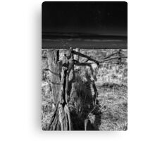 the long fence Canvas Print