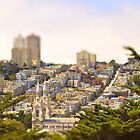 San Francisco, CA (Tilt Shift) by Barb White