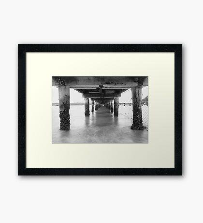 > > > Narrow Minded < < < Framed Print