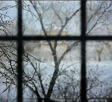 Through The Window by Crista Peacey