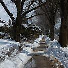 Sidewalk by Joanne  Bradley