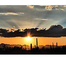 Arizona Saguaro Sunset Photographic Print
