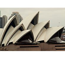 Opera House Sails Photographic Print
