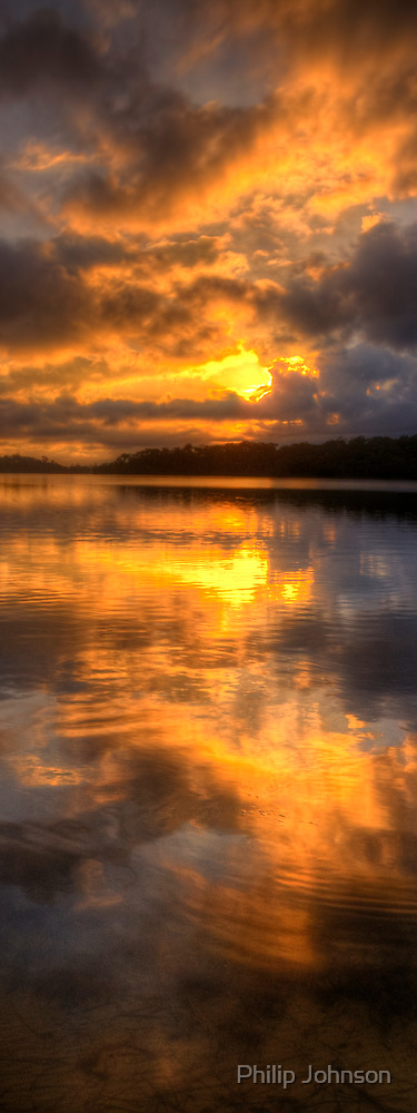 Brooding Morn - Narrabeen Lakes Sydney Australia (Vertical Crop) - The HDR Experience by Philip Johnson