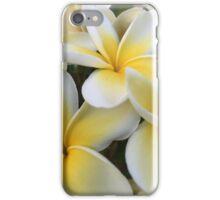 Plumeria Flower Trio iPhone Case/Skin