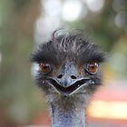 The Happy Emu by myebra