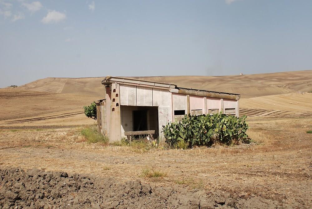 Derelict Agricultural Building by jojobob