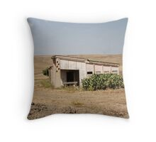 Derelict Agricultural Building Throw Pillow