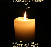 Life as Art by Canon banner by Jeanette Muhr