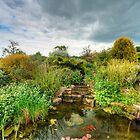 Pond & Sky by Mick Yates