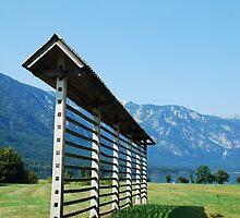 Slovenian Hay Storage Structure by jojobob